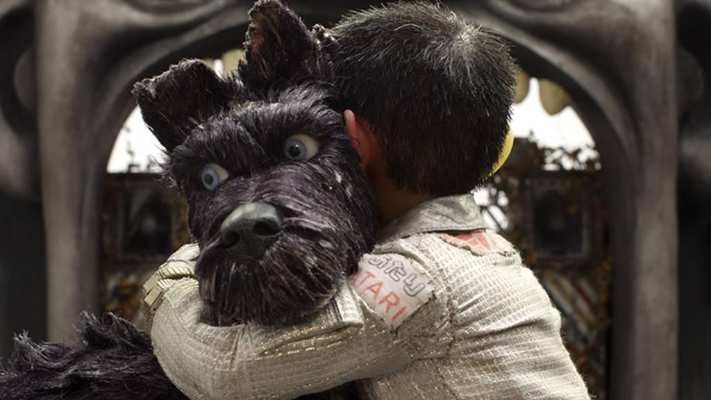 【犬ヶ島】のストーリー(あらすじ)