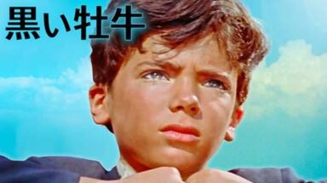 ヒューマンドラマ映画【黒い牡牛(1956年:アメリカ)】の動画を無料フル視聴で配信してる動画配信サービス・レンタルDVD情報!最新映画おすすめ洋画【黒い牡牛】を見れるおすすめ動画配信サービスはNetflix・hulu・Amazon・U-NEXT・dTVのどこ?