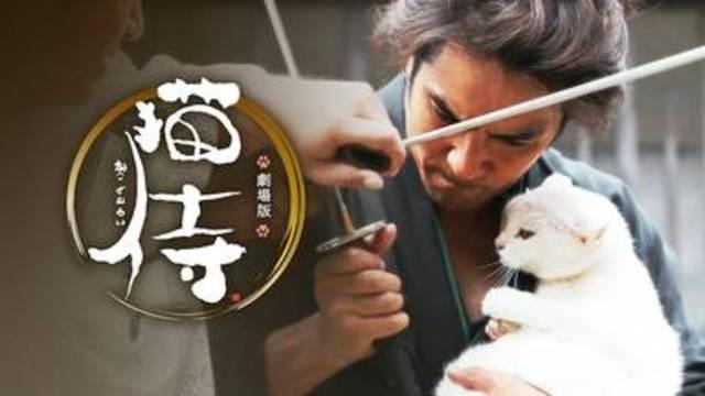 【猫侍】映画を無料フル動画視聴する方法丨無料映画視聴におすすめVOD動画配信サービスはどこ?