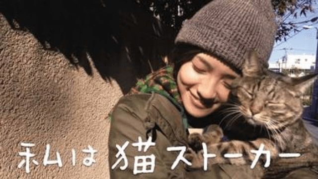 【私は猫ストーカー】映画を無料フル動画視聴する方法丨無料映画視聴におすすめVOD動画配信サービスはどこ?