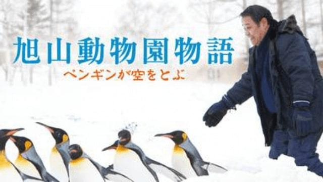 【旭山動物園物語 ペンギンが空をとぶ】映画を無料フル動画視聴する方法丨無料映画視聴におすすめVOD動画配信サービスはどこ?