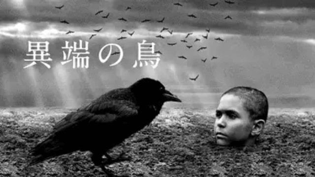 【異端の鳥】映画を無料フル動画視聴する方法丨無料映画視聴におすすめVOD動画配信サービスはどこ?