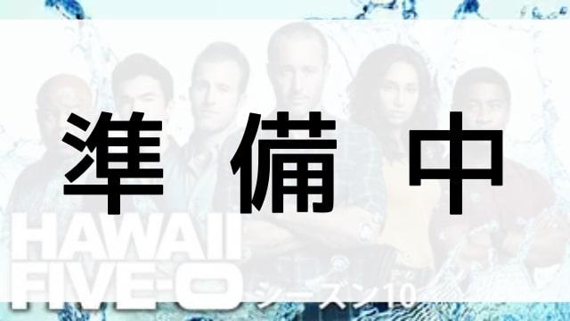 【HAWAII FIVE-0 ファイナルシーズン10】の登場人物相関図