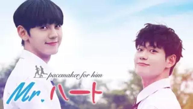 【Mr.ハート】韓国映画が現在配信中の無料動画配信サービス情報を早見一覧表でまとめて分かる テレビ放送予定で見逃した韓流映画をフル視聴するVOD方法